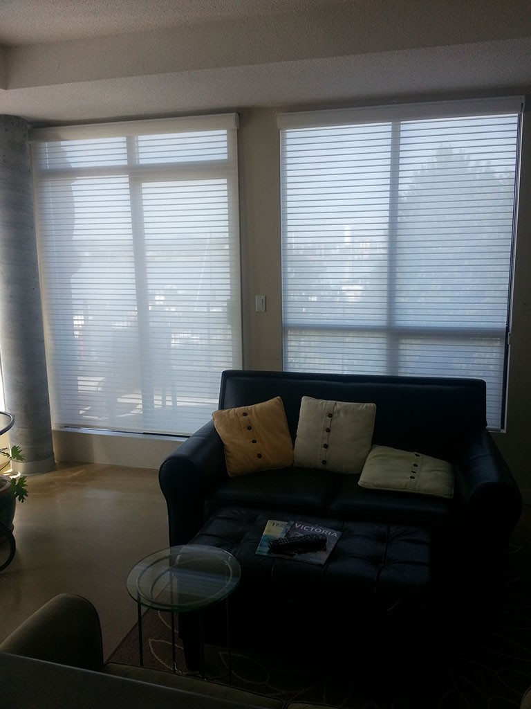 semi-transparent soft white shades diffusing the light of two large living room windows